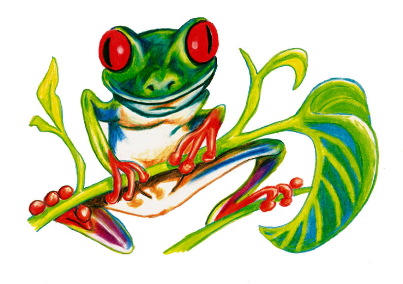 frog8